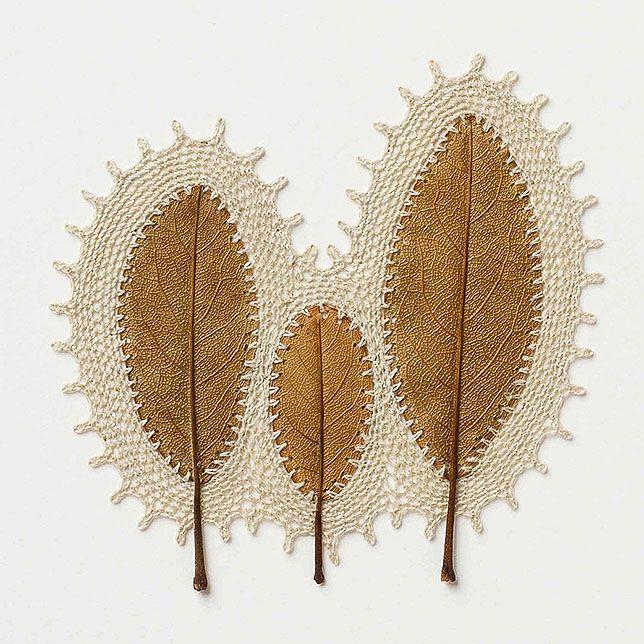 Умелица обвязывает сухие листья крючком. Бесподобные работы, которые смотрятся необычно